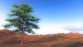 在小山的偏僻的树在早晨时间 皇族释放例证