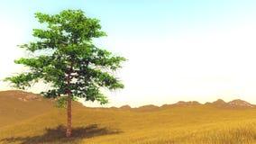 在小山的偏僻的结构树 库存例证