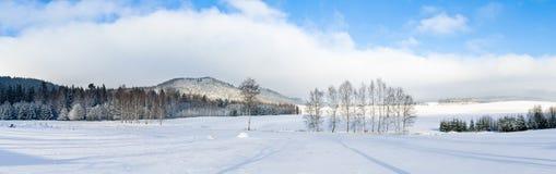 在小山的冬天 免版税库存图片