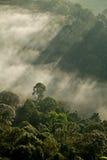 在小山的天堂般的光 免版税库存图片