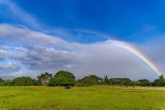 在小山的彩虹 库存图片