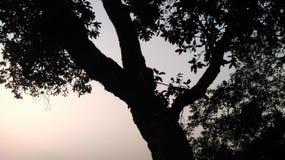 在小山的日落闪电 免版税库存图片