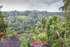 在小山的木bulgalows在巴厘岛,印度尼西亚 库存图片