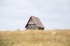 在小山的村庄 免版税库存图片