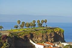 在小山的棕榈 马德拉岛海岛,葡萄牙 免版税库存图片