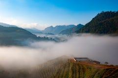在小山的海薄雾 库存照片