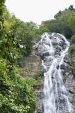 在小山的瀑布在森林里 库存图片