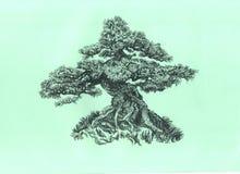 在小山的结构树 用手图表 免版税库存图片