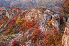 在小山的美好的五颜六色的秋天风景的看法与树、岩石和未开发的地区的在乡下 免版税库存图片