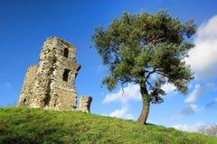 在小山的老石中世纪城堡塔废墟 免版税图库摄影