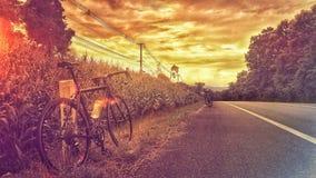 在小山的路自行车 库存照片
