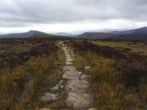 在小山的长的道路,威尔士 库存照片