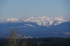 在小山的雪在俄勒冈 库存图片