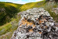 在小山的领域的一块石头 库存图片