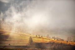 在小山的11月有雾的早晨 库存照片