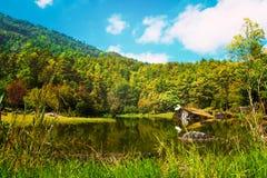 在小山自然风景背景的森林运河 免版税图库摄影