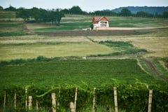 在小山,弗尔沙茨,塞尔维亚中间的偏僻的房子 库存照片