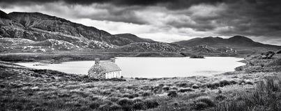 在小岛的严重的横向仔细考虑,苏格兰 免版税图库摄影