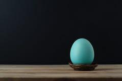 在小巢的土耳其玉色鸡蛋有黑背景 图库摄影
