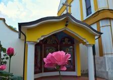 在小开放教堂前面的桃红色玫瑰在修道院里 免版税图库摄影