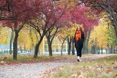 在小径的少妇步行在秋天公园、黄色叶子和树 库存图片