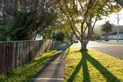 在小新西兰镇街道上的太阳集合 免版税库存图片