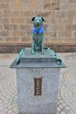 在小樽运河附近 Bunkou或Bunchan,勇敢的狗, 免版税库存图片