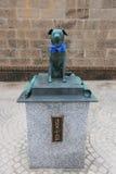 在小樽运河附近 Bunkou或Bunchan,勇敢的狗, 免版税库存照片