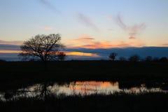 在小池塘的日落秀丽 库存照片
