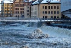 在小河中间的冷淡的分支 免版税图库摄影