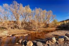 在小河的下午星期日 免版税库存照片