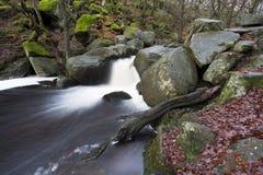 在小河的流动的水 免版税库存图片