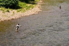 在小河的用假蝇钓鱼 免版税库存图片