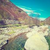 在小河的石头 库存照片