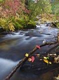 在小河的秋天颜色 图库摄影