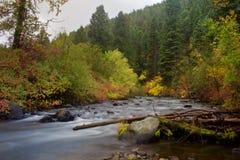 在小河的秋天颜色 库存照片