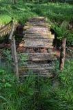 在小河的老桥梁在森林 库存照片