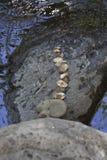 在小河的被排行的岩石在Sedona亚利桑那 图库摄影