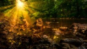 在小河的阳光 免版税库存图片