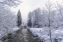在小河附近的冬天风景 免版税图库摄影