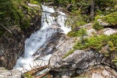 在小河Studeny potok的瀑布在高Tatras,斯洛伐克 免版税库存图片
