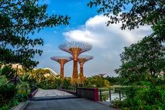 在小游艇船坞海湾沙子的Supertrees,新加坡 免版税库存照片