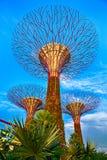 在小游艇船坞海湾沙子的Supertrees,新加坡 图库摄影