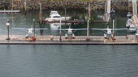 在小游艇船坞的三架水上飞机 库存照片