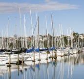 在小游艇船坞的游艇在奥克兰 免版税库存照片