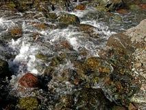 在小瀑布的石头 库存照片