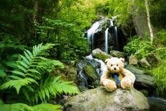 在小瀑布附近的玩具熊落在生苔岩石 库存图片