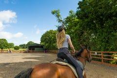 在小牧场的马骑术 库存图片