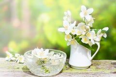在小瓷水罐的柔和的茉莉花 图库摄影