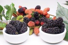 在小碗的黑莓在白色背景中 免版税图库摄影